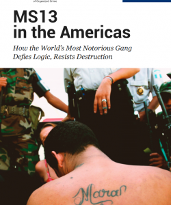 MS13 in the Americas