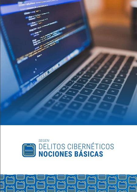 Delitoscibernéticos - nociones básicas